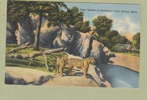 Tiger Exhibit Vintage Postcard Detroit Zoological Park Michigan