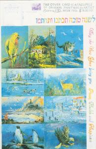Multible Paintings by Morris Katz