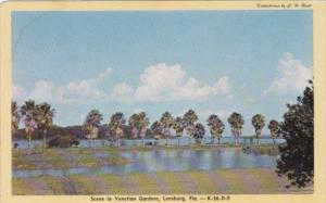 Florida Leesburg Scene In Venetian Gardens Dexter Press