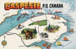 Gaspesie Quebec Map incl Fishing Boats Deer Canada Postcard