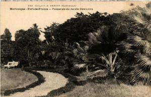 CPA Martinique. F. de France. Palmeraie du Jardin Desclieux MADAGASCAR (625369)