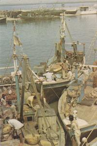 KARACHI, Pakistan, 1950-1970's; Fishermen At Work, Fish Harbour