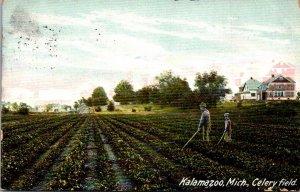 Michigan Kalamazoo Typical Celery Field 1908