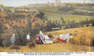 France~International Harvester Co~Oxen Operation Self-Binder~Farm Machinery~1909