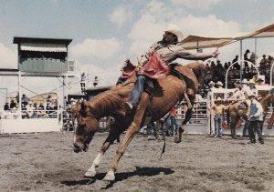 CALGARY, Alberta,1950-60s; Calgary Exhibition And Stampede
