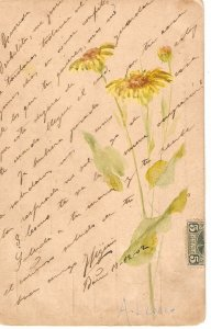 Beautiful flowers Old vintage antique Spanish postcard