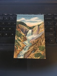 Vintage postcard - Lower Yellowstone falls and Canyon