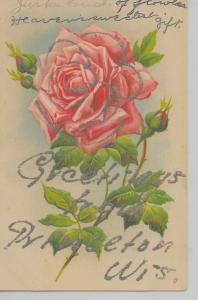 Princeton Wisconsin Greetings From flowers glittered antique pc Z13624