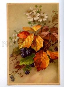 189587 Autumn Bouquet Berry by C. KLEIN Vintage colorful PC