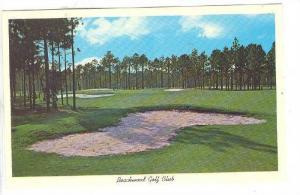 The Scenic Par Four Sixteenth Hole, Beachwood Golf Club,  Myrtle Beach, South...