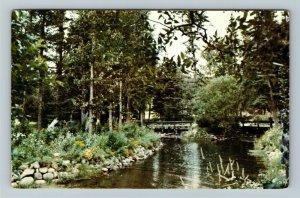 Manitoba- Canada, Riding Mountain Natl Park, Mystic Creek, Chrome c1964Postcard
