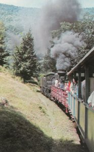 WEST VIRGINIA, 1940-60s; Cass Scenic Railroad, Old Lumber Railroad