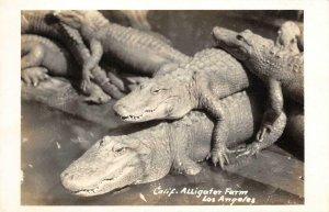 RPPC California Alligator Farm, Los Angeles, CA c1940s Vintage Photo Postcard