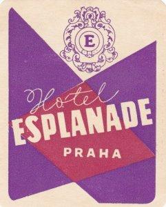 Czechoslovakia Praha Hotel Esplanade Vintage Luggage Label sk4317