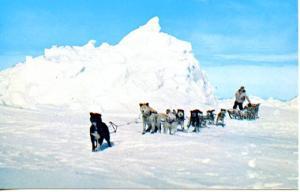 AK - Eskimo Hunter and Dog Team