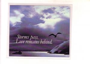 Peel Off Plasticized Postcard Coaster, Seagull, Shoreline, 'Storms Pass, Love...