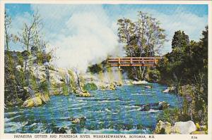 New Zealand Papakura Geyser and Puarenga River Whakarewarewa Rotorua