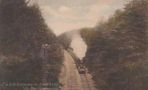 SW Express Surrey Hindhead To Pinewoods Antique Train Railway Postcard