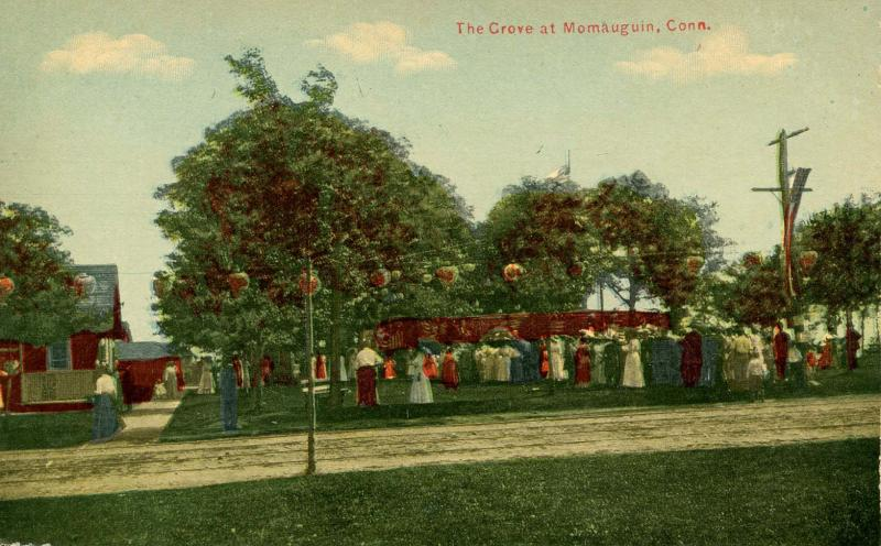 CT - Momauguin. The Grove