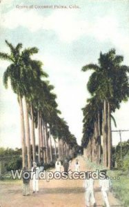 Grove of Cocoanut Palms Republic of Cuba Unused