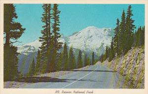 Washington Mount Rainier From Sunrise Parkway