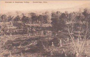 Ohio Cambirdge Harvest In Guernsey Valley Albertype