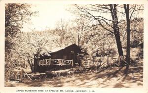 Jackson NH A[[le Blossom Time~Spruce Mt Lodge~Real Photo Postcard~RPPC 1939