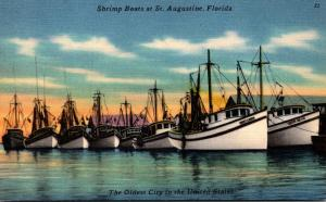 Florida St Augustine Shrimp Boats