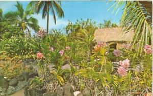 Kong's Floraleigh Gardens, Hilo, Hawaii, unused Postcard
