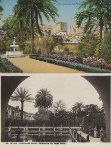 Sevilla Jardines Del Alcazar Spanish Real Photo 2x Old Postcard
