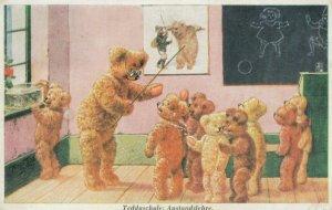 Teddy Bear School , Classroom #1 , 20-40s