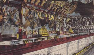 Famous Buckhorn Curio Museum, Original Buckhorn Bar View, San Antonio,  Texas...