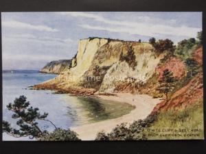 Devon SEATON White Cliff & Beer Head from Cliff Path C. Howard by J Salmon 4131