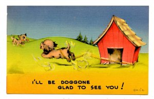 Humor - Doggone Glad