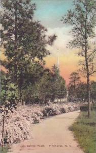 North Carolina Pinehurst Spirea Walk Albertype