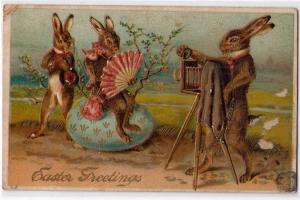 Easter Card - Bunnies, Camera - Taking Picture