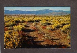 CA Honey Lake Valley nr Susanville California Postcard Dirt Rd