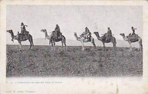People Riding On Camels, Chameliers En Marche Dans Le Desert, Damas, Syria, 1...