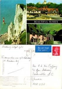 Beautiful Sussex (10350)