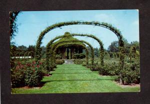 CT Elizabeth Park Rose Gardens Hartford Conn Connecticut Postcard