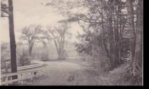 New York Utica Roscoe Conklin Park Albertype