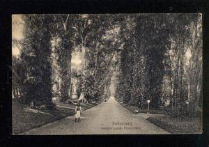 045365 HOLLAND INDIA INDONESIA Buitenzorg Vintage #5