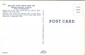 Red Aloe Shore Line Landscape Pacific Grove California USA Postcard 1970's