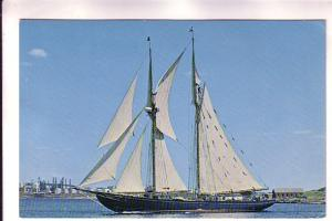 Schooner Bluenose II Oland & Son Ltd, View of Dartmouth, Nova Scotia