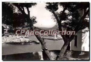 Old Postcard Cassis Entree Du Port