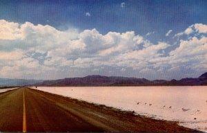 Utah Bonneville Salt Flats U S Highway 40-50 World's fastest Speedway