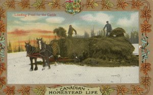 Homestead Life , Canada , 1900-10s ; Loading food for the cattle