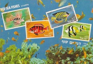 Red Sea Fishes Stamps