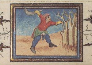 Pruning Trees Belgium Flemish Prunes Medieval Book Postcard