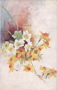 A. Price KING: Flowers NARCISSUS , 00-10s TUCK
